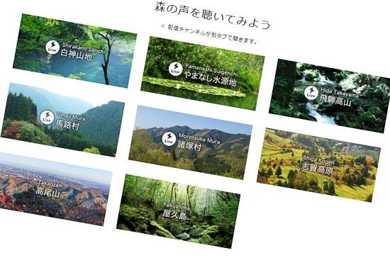Mori_blog